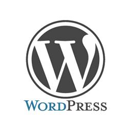 イラストレーターやフォトショップ、Webデザイン WordPressの個人レッスン学校。出張スカイプで東京~全国対応。無料体験レッスン、入会金無料特典あり。